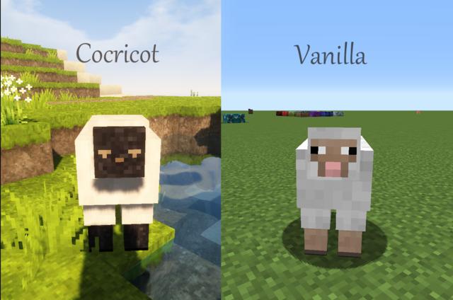 羊の比較.png