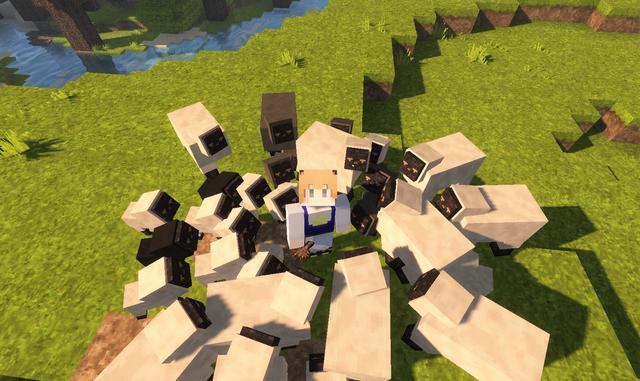 羊の群れ.png